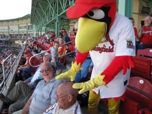 Cardinals Game pic